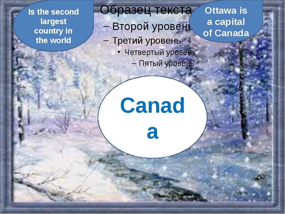 Canada Is the second largest country in the world Ottawa is a capital of Canada