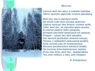 Мой лес. Стоит мой лес весь в зимнем серебре, Здесь просто царство сонное кр
