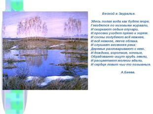 Весной в Зауралье. Здесь полая вода как будто море. Гнездятся по низовьям жу