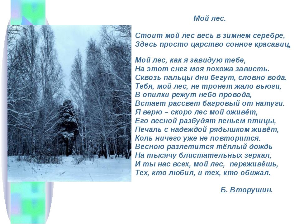 Мой лес. Стоит мой лес весь в зимнем серебре, Здесь просто царство сонное кр...