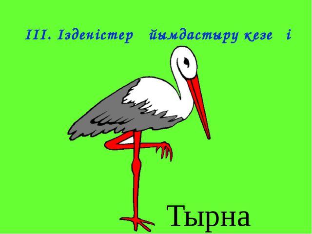 IІІ. Ізденістер ұйымдастыру кезеңі Тырна