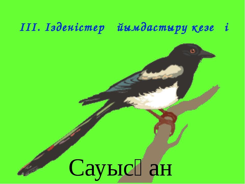 IІІ. Ізденістер ұйымдастыру кезеңі Сауысқан
