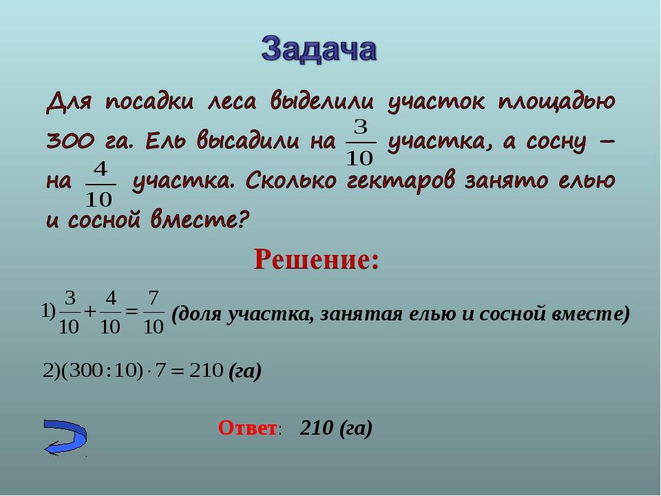 (доля участка, занятая елью и сосной вместе) (га) Ответ: 210 (га)