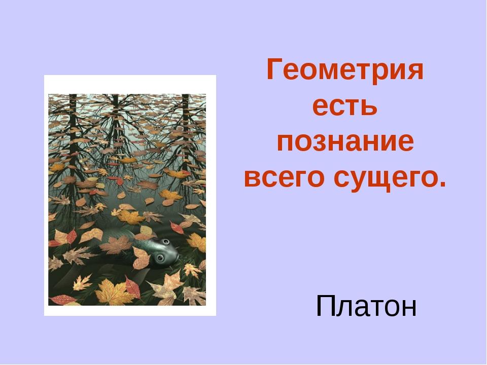Геометрия есть познание всего сущего. Платон