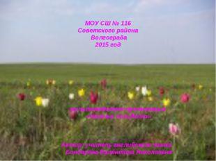 МОУ СШ № 116 Советского района Волгограда 2015 год мультимедийная презентаци