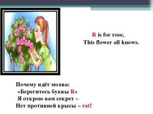 R is for rose, This flower all knows. Почему идёт молва: «Берегитесь буквы R
