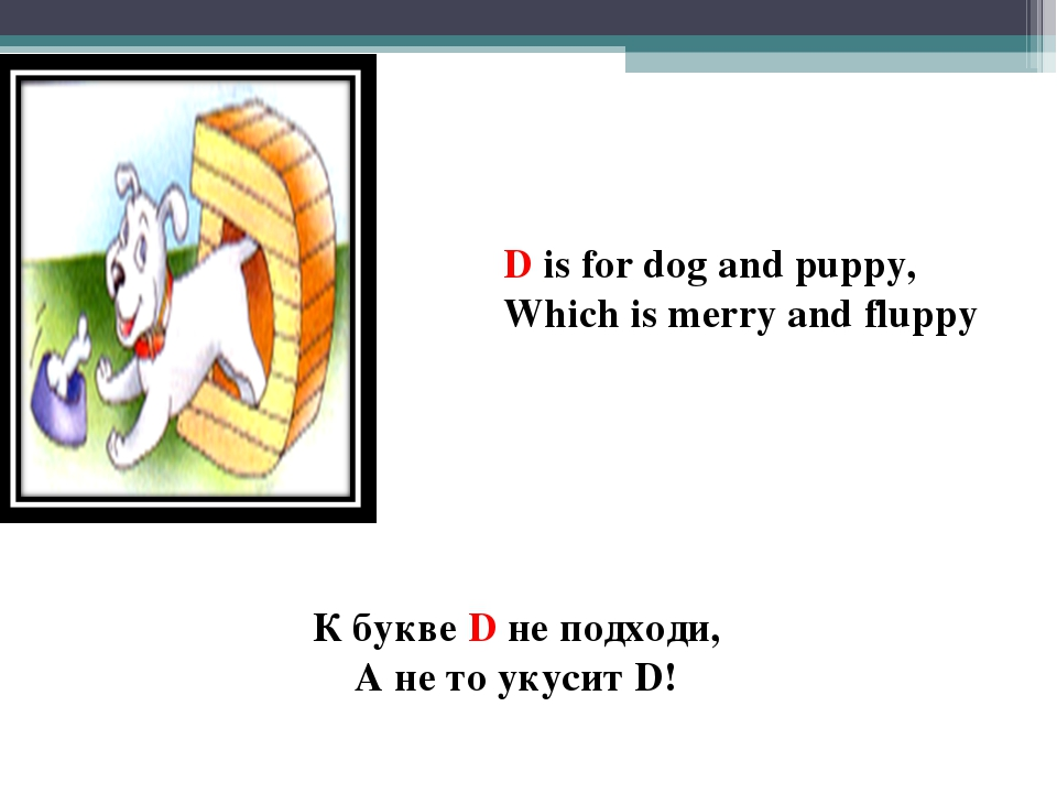 D is for dog and puppy, Which is merry and fluppy К букве D не подходи, А не...