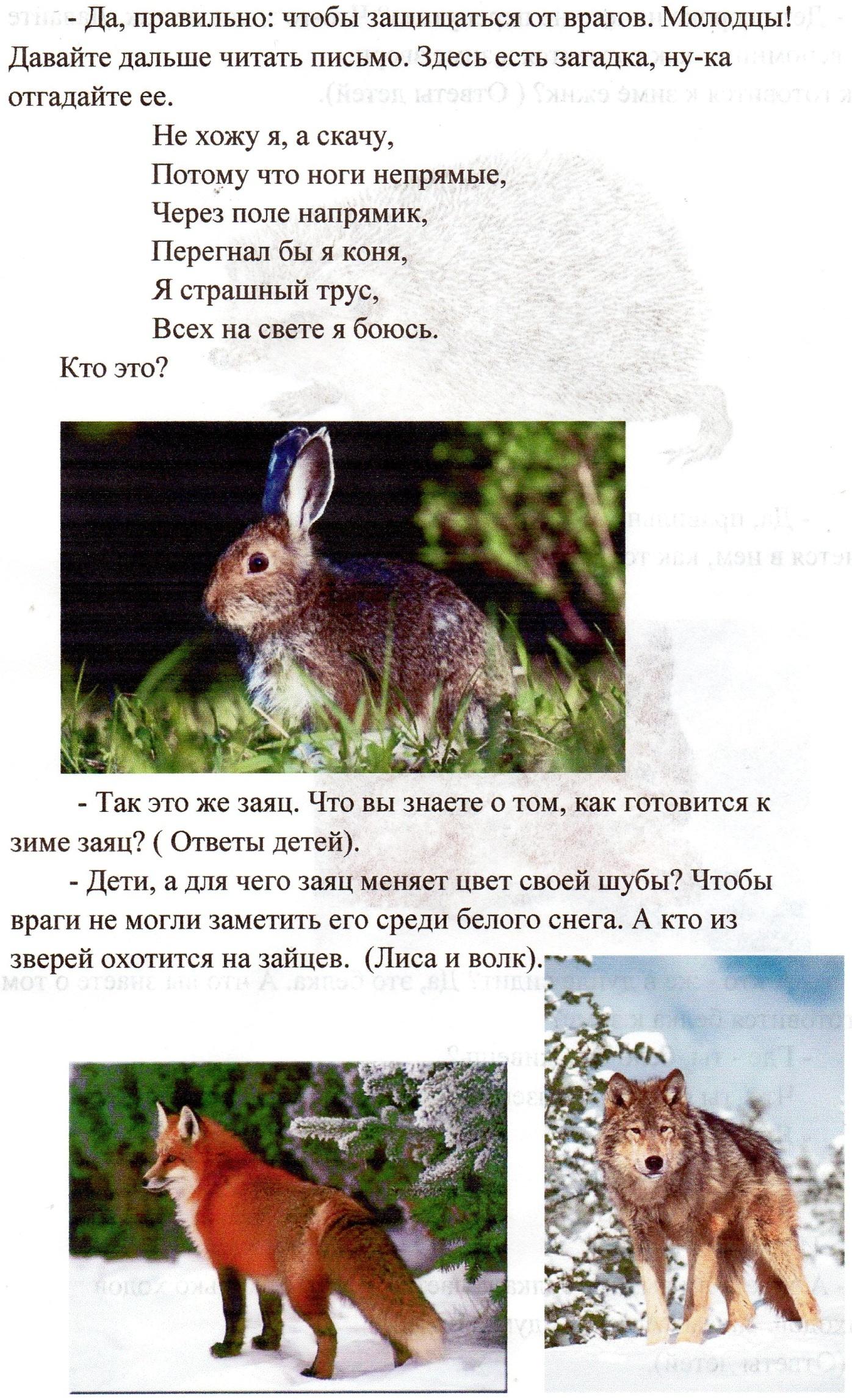 C:\Users\Александр\Pictures\img019.jpg