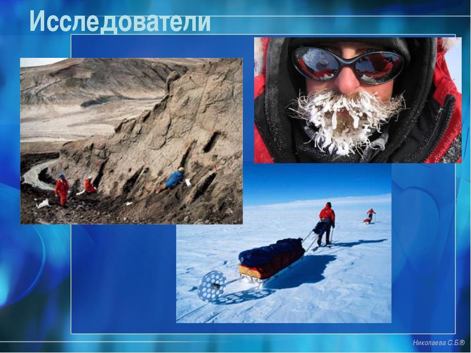 Исследователи Николаева С.Б.®
