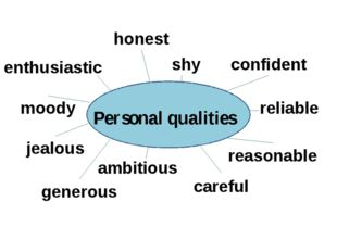 Personal qualities enthusiastic honest shy confident reliable reasonable car