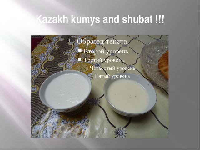 Kazakh kumys and shubat !!!