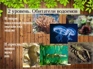 2 уровень. Обитатели водоемов В море: коралловые полипы морские ежи медузы В