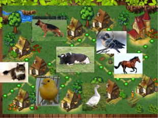3 уровень. Домашние животные