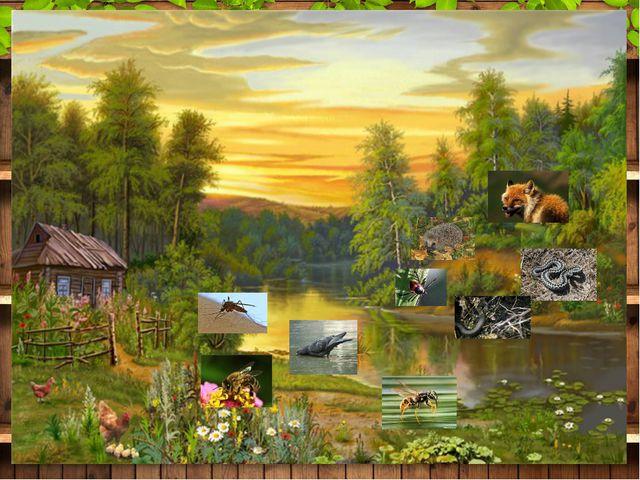 1 уровень: «Обитатели леса» Текст слайда