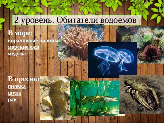 2 уровень. Обитатели водоемов В море: коралловые полипы морские ежи медузы В...