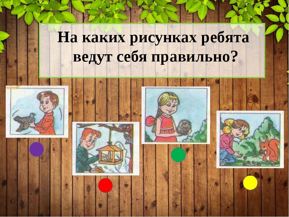 На каких рисунках ребята ведут себя правильно?