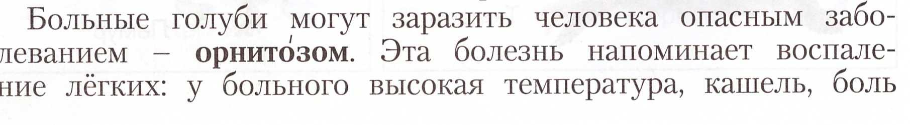 C:\Users\Наталья\Desktop\1.jpeg