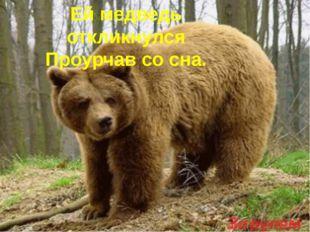 Ей медведь откликнулся Проурчав со сна.