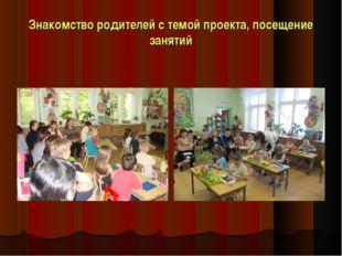 Знакомство родителей с темой проекта, посещение занятий
