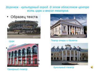 Воронеж - культурный город. В этом областном центре есть цирк и много театров