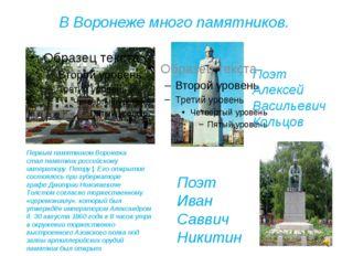 В Воронеже много памятников. Первым памятником Воронежа сталпамятник российс