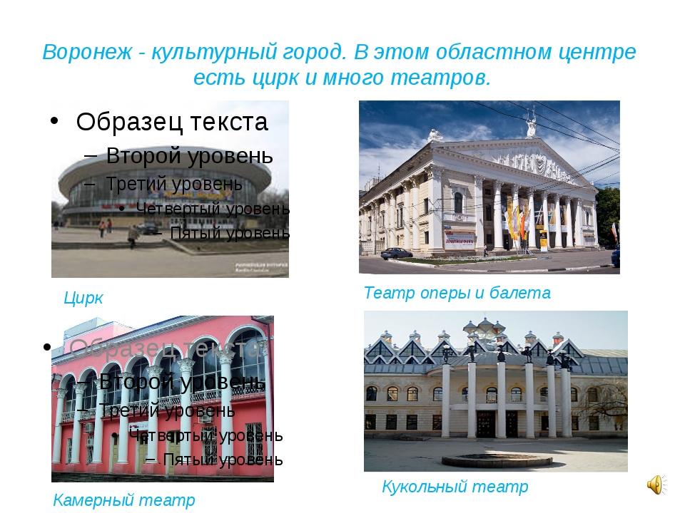 Воронеж - культурный город. В этом областном центре есть цирк и много театров...