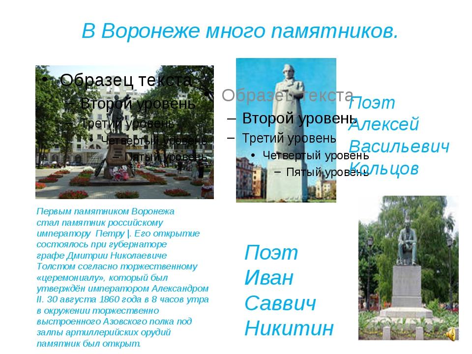 В Воронеже много памятников. Первым памятником Воронежа сталпамятник российс...