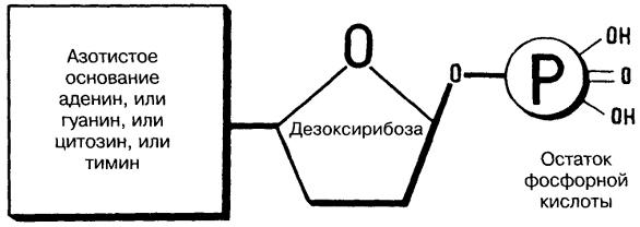 http://bibl.tikva.ru/base/B1774/img/B1774p29-1.jpg