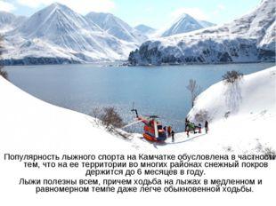 Популярность лыжного спорта на Камчатке обусловлена в частности тем, что на е