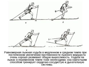 Равномерная лыжная ходьба в медленном и среднем темпе при постепенном увеличе