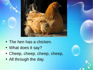 The hen has a chicken. What does it say? Cheep, cheep, cheep, cheep, All thr