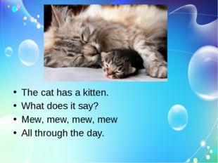 The cat has a kitten. What does it say? Mew, mew, mew, mew All through the d