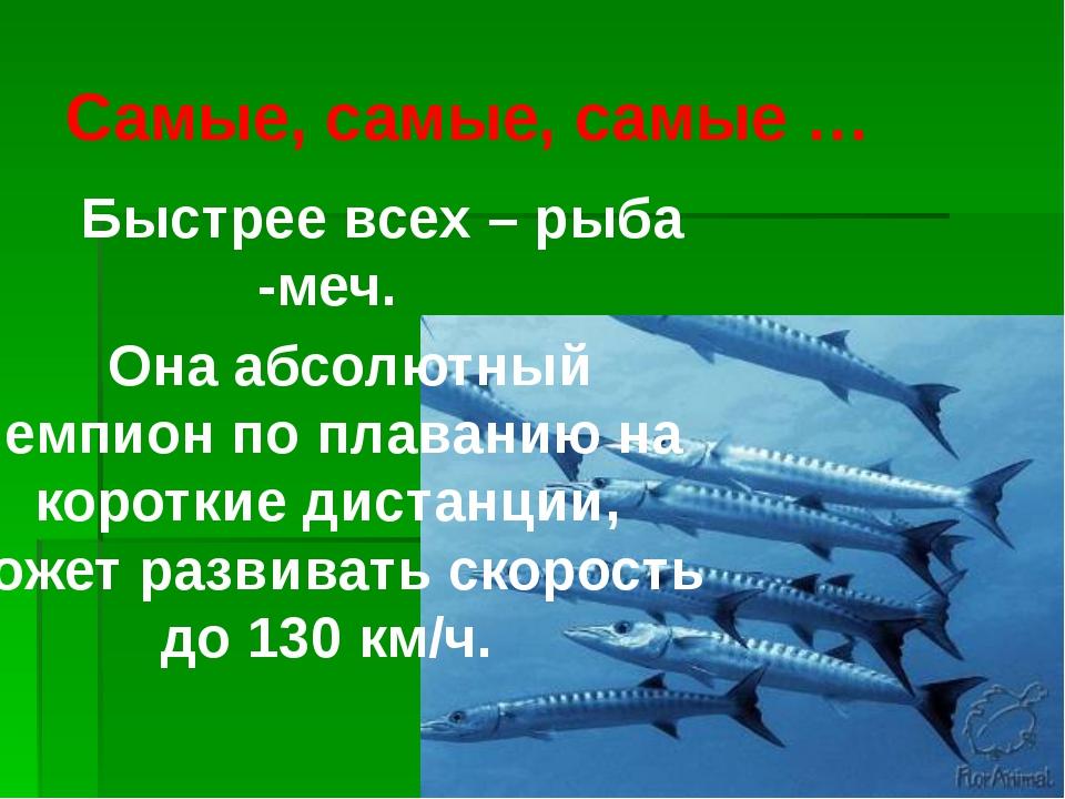 Самые, самые, самые … Быстрее всех – рыба -меч. Она абсолютный чемпион по пла...