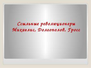 Ссыльные революционеры Михаэлис, Долгополов, Гросс