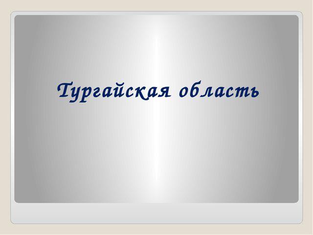 Тургайская область