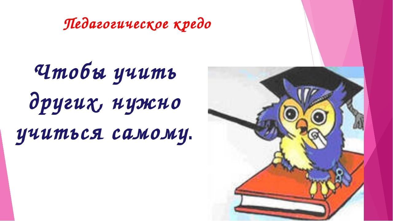 Педагогическое кредо Чтобы учить других, нужно учиться самому.