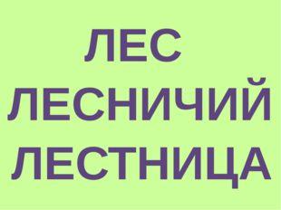 ЛЕС ЛЕСНИЧИЙ ЛЕСТНИЦА