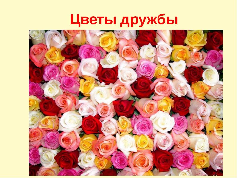 Цветы дружбы