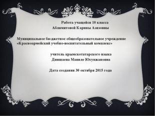 Работа учащейся 10 класса Аблямитовой Карины Азизовны Муниципальное бюджетно