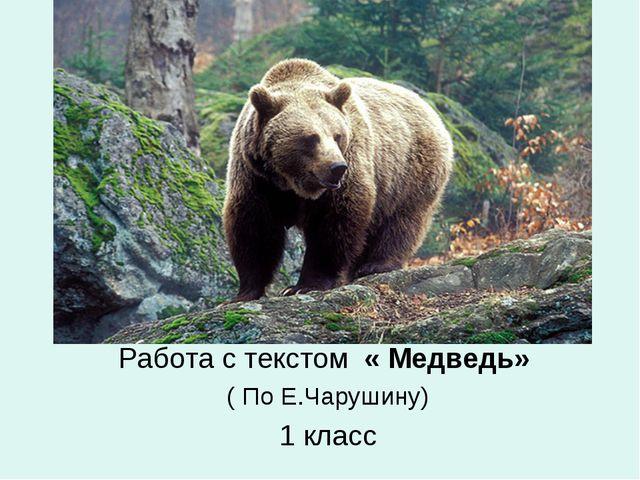 Работа с текстом « Медведь» ( По Е.Чарушину) 1 класс