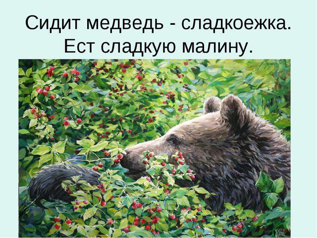 Сидит медведь - сладкоежка. Ест сладкую малину.