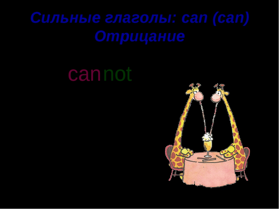 Сильные глаголы: can (can) Отрицание They can fly. not can n o t ' t