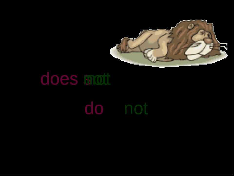 He to sleep. want s do does not do + not does not does n o t '