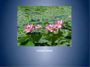 Озеро Ханка