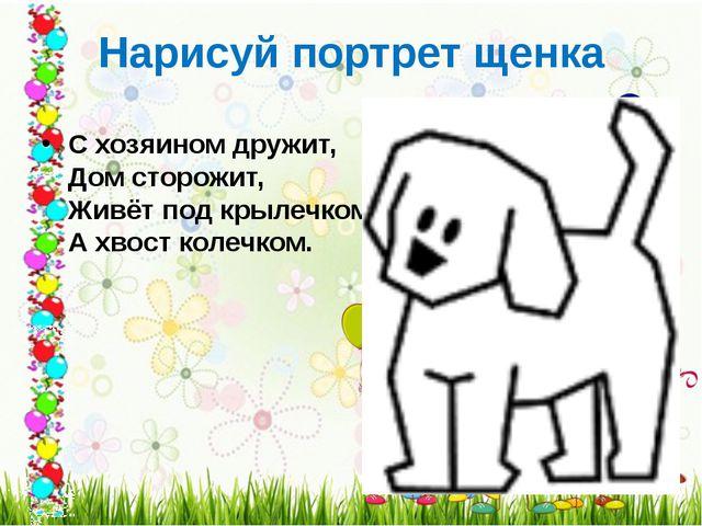 Нарисуй портрет щенка С хозяином дружит, Дом сторожит, Живёт под крылечком,...
