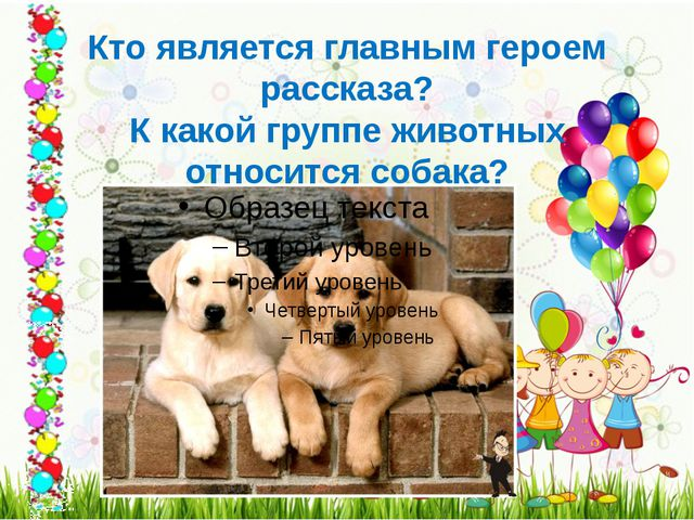 Кто является главным героем рассказа? К какой группе животных относится собака?