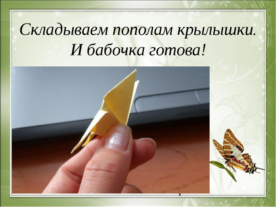 Складываем пополам крылышки. И бабочка готова!