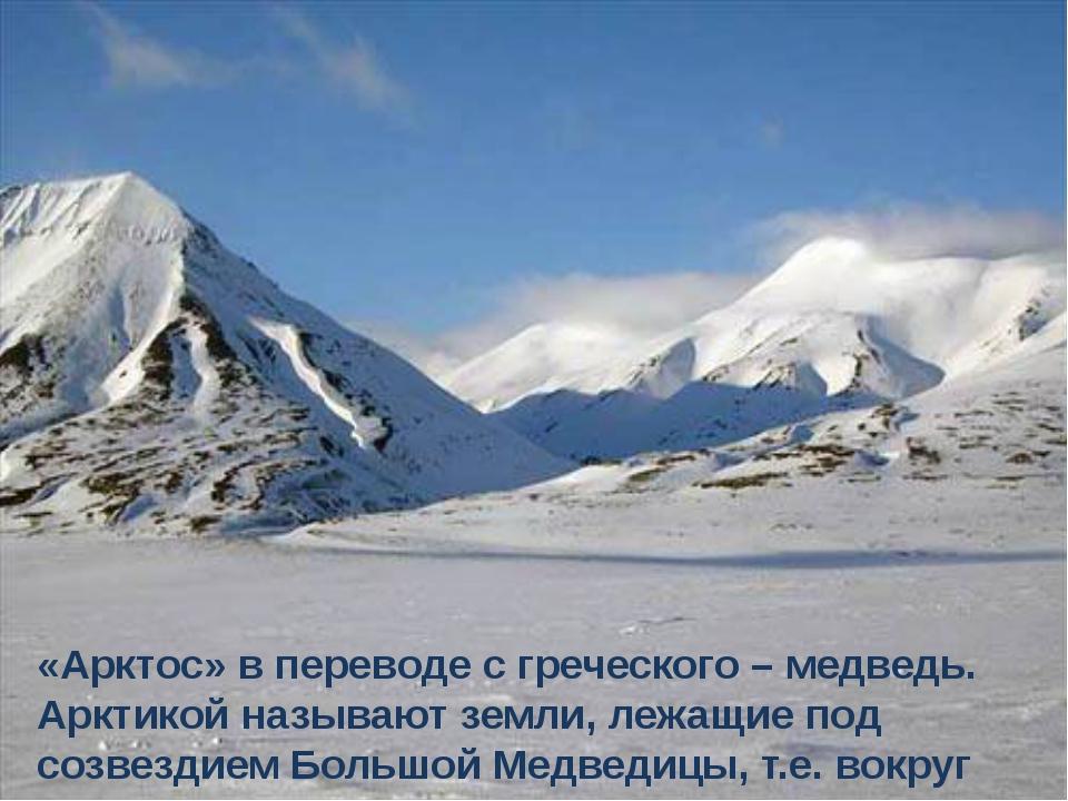 «Арктос» в переводе с греческого – медведь. Арктикой называют земли, лежащие...