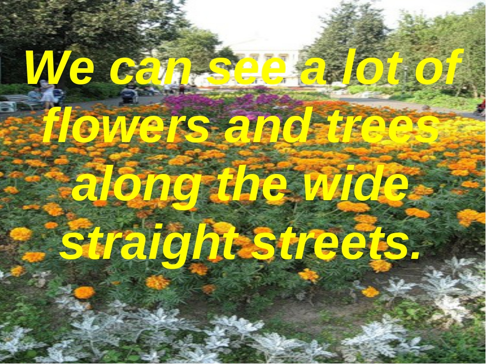 We can see a lot of flowers and trees along the wide straight streets.