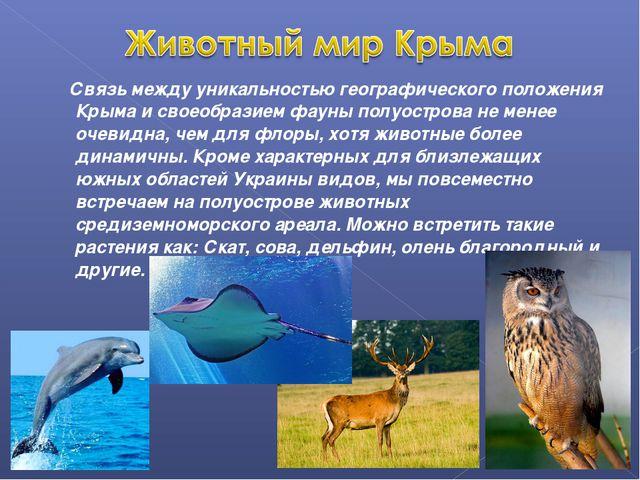 Связь между уникальностью географического положения Крыма и своеобразием фау...